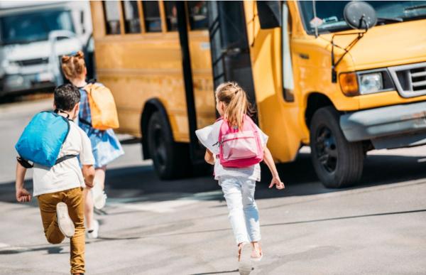 """CNA Trentino Alto Adige: """"Trasporto scolastico, si usino i mezzi delle piccole aziende. Il 90% di autobus e Van è fermo, tentiamo ogni soluzione per scongiurare la chiusura delle scuole"""""""